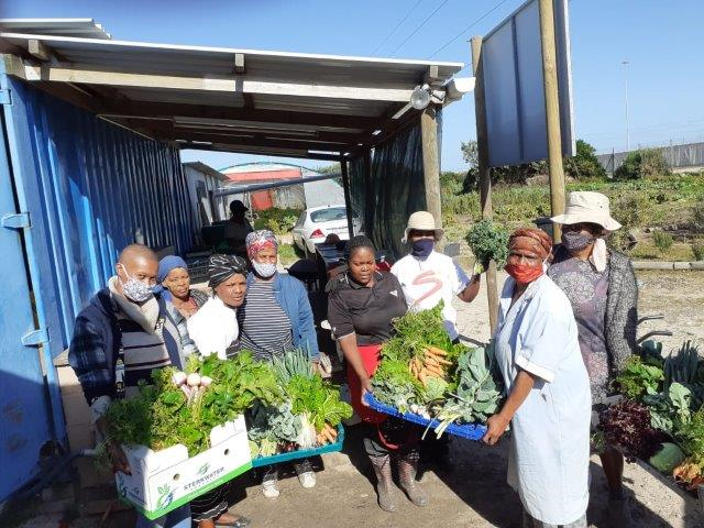 Township SMEs Fighting Hunger Together In Communities